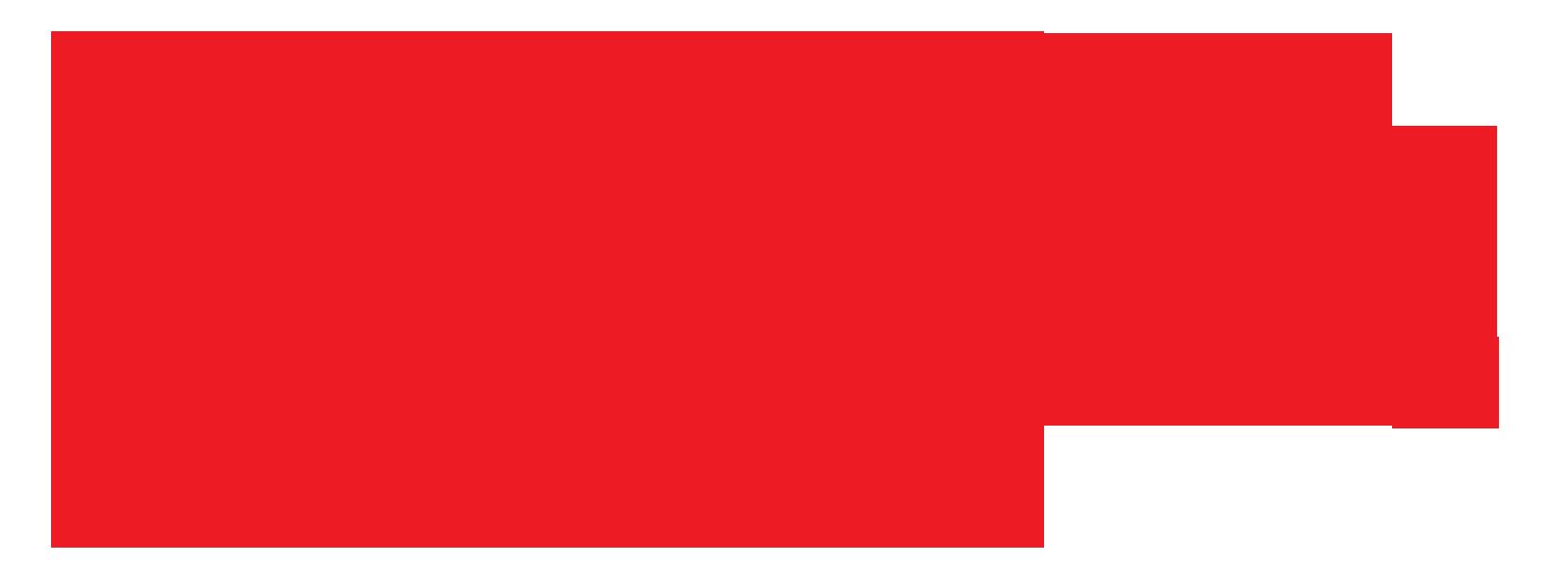 Denver Professional Movers Logo