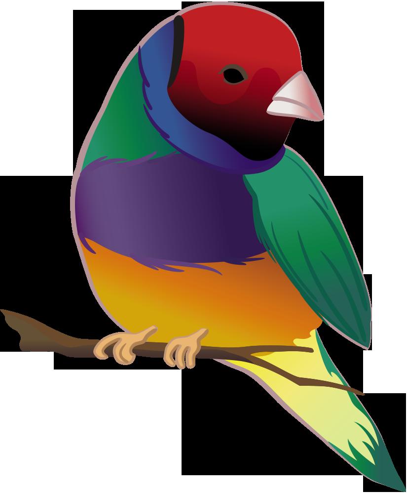 Finch Moving San Diego Logo