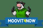 Moovit4now – Moving Company Logo
