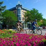Moving to Fort Collins, CO