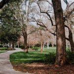 Moving to Savannah, GA