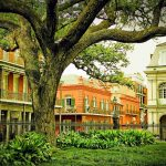 Moving to New Orleans, LA